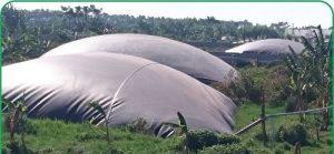 Hầm biogas phủ bạt HPDE